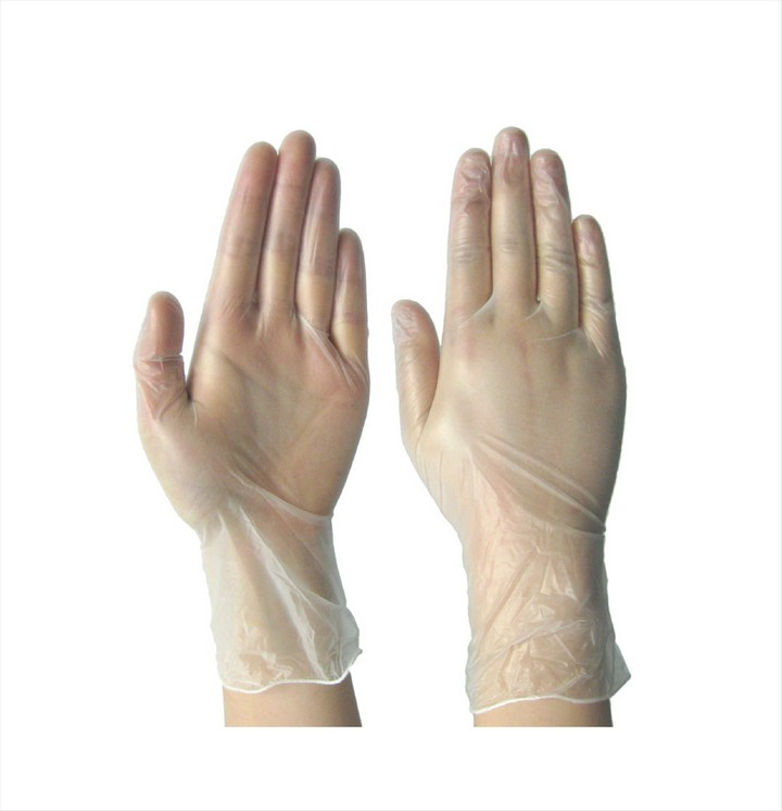 Vinyl Gloves Disposable (100 pack)