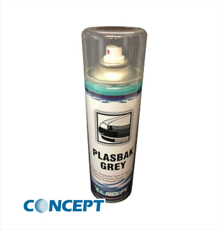 Concept Plasbak Paint (450ml)